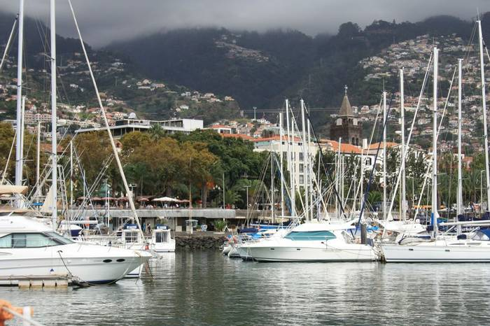 The marina, Funchal (Catherine Strong)