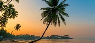 14 Day   Goa   Itinerary Desktop