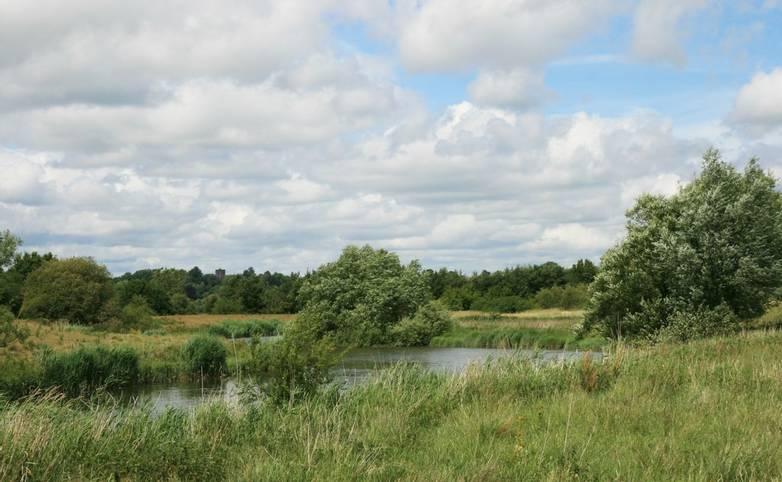 River_Arun_near_Pulborough.JPG