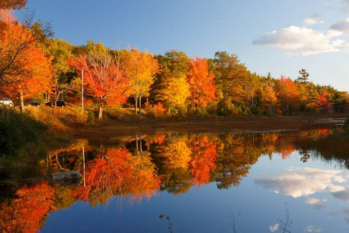 Acadia National Park, North America shutterstock_330075920.jpg