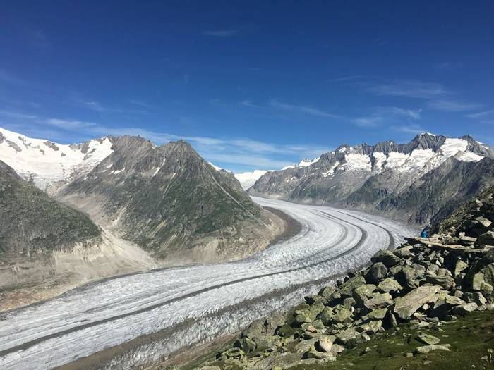 Aletsch Glacier  (Kerrie Porteous)