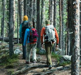 National Park hike and Aurora photography workshop