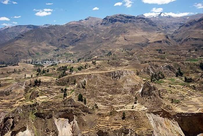 Agricultural terraces, Colca Canyon (David Allison)