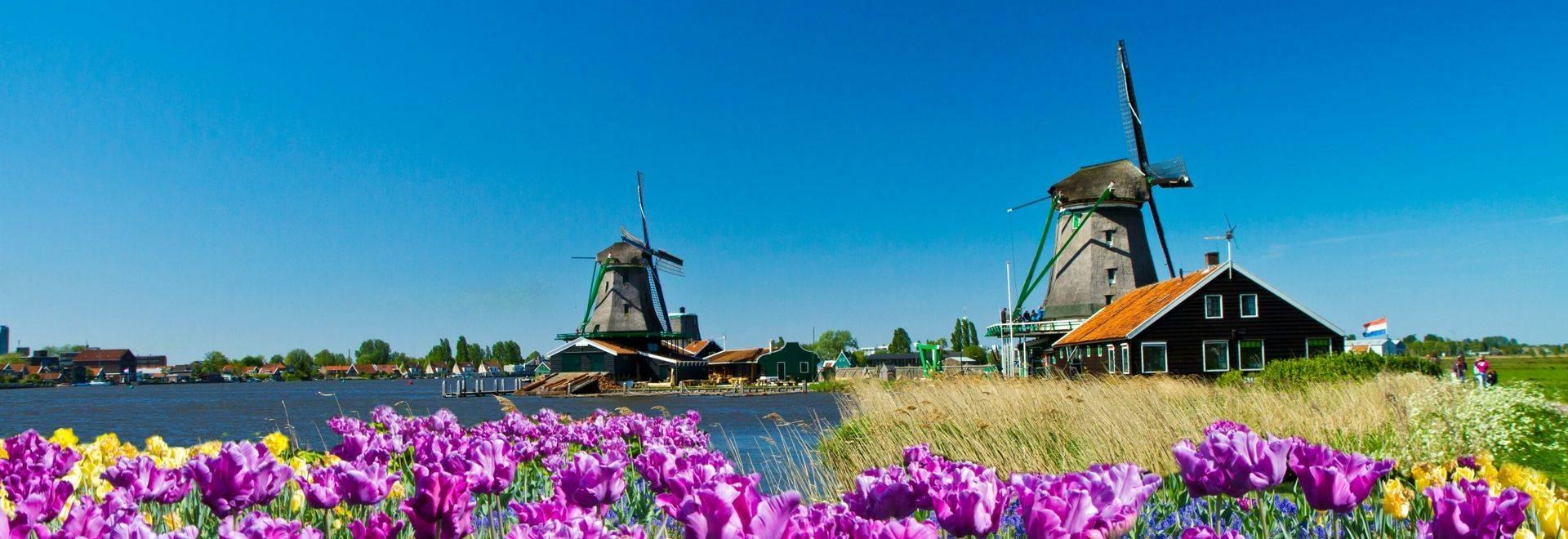 Shutterstock 77821972 Experience The Land Of The Windmills