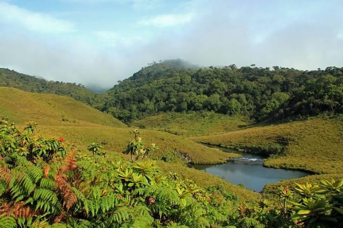 Horton Plains, Sri Lanka shutterstock_182923808.jpg