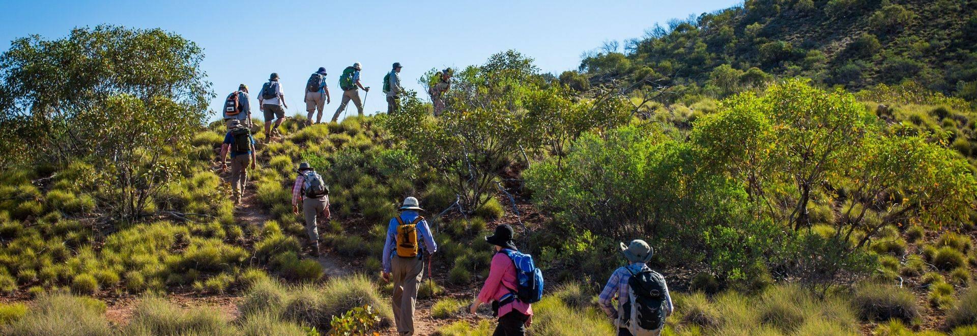 Great Walks LT Trekking 2