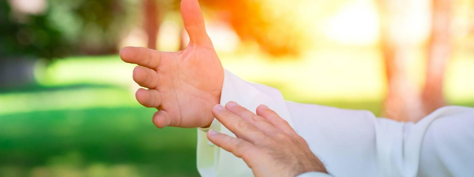 Tai chi chuan hands
