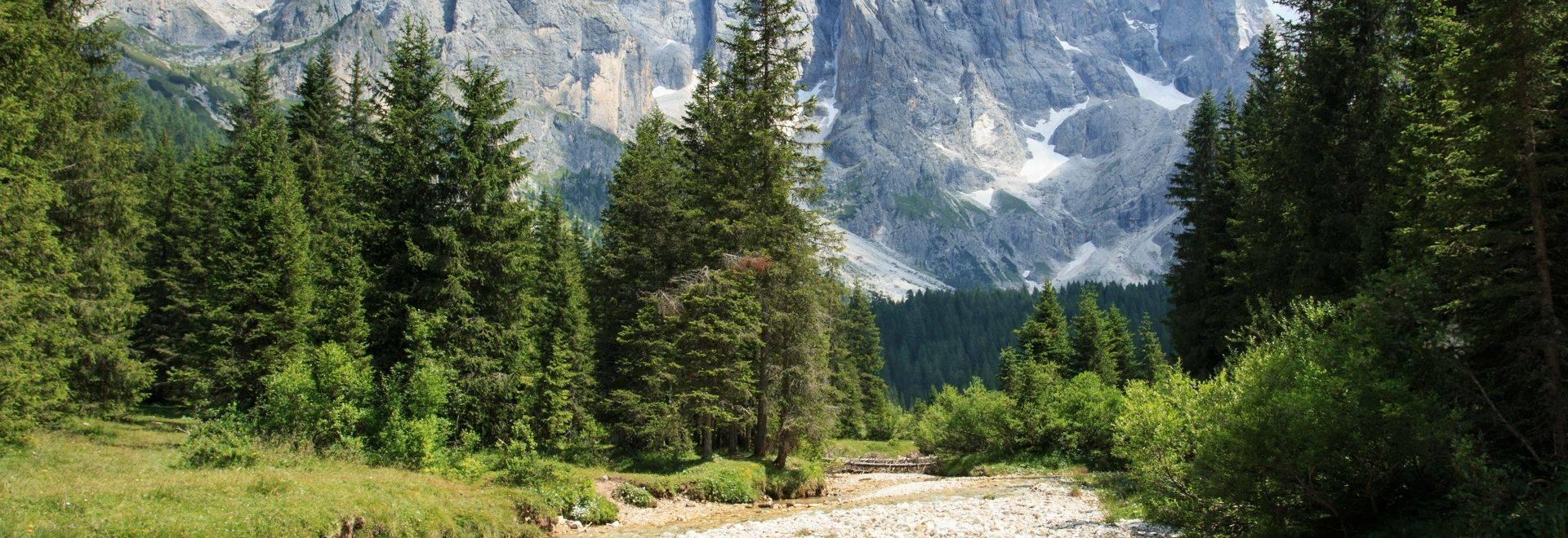 Val Venegia, Italian Dolomites shutterstock_625066994.jpg