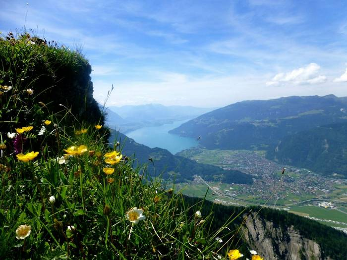 View to Thunersee (Kerrie Porteous)