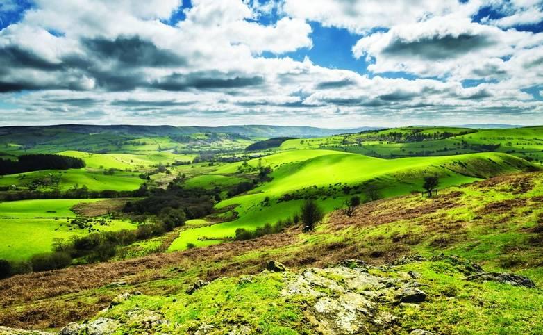 British Countryside  Green Hills at Spring