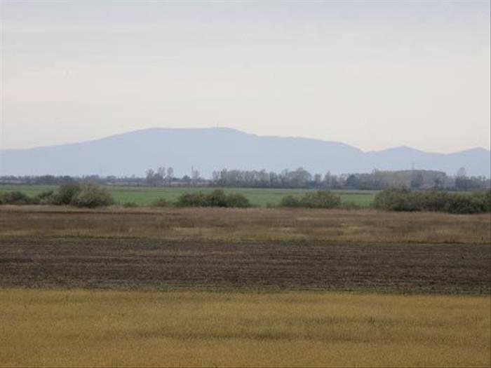 Rural Hungary (Malcolm Stott)