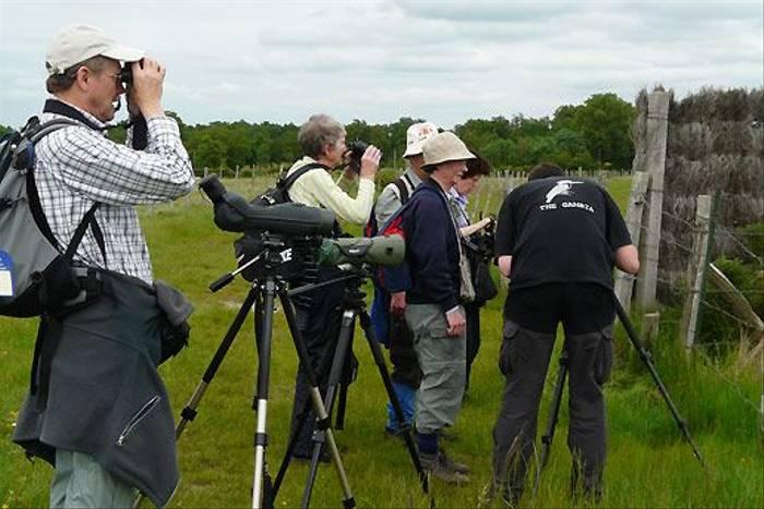 Wildlife watching (Tom McJannet)