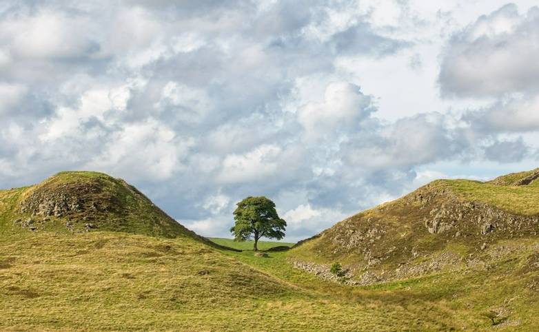 Sycamore Gap on Hadrian's Wall.