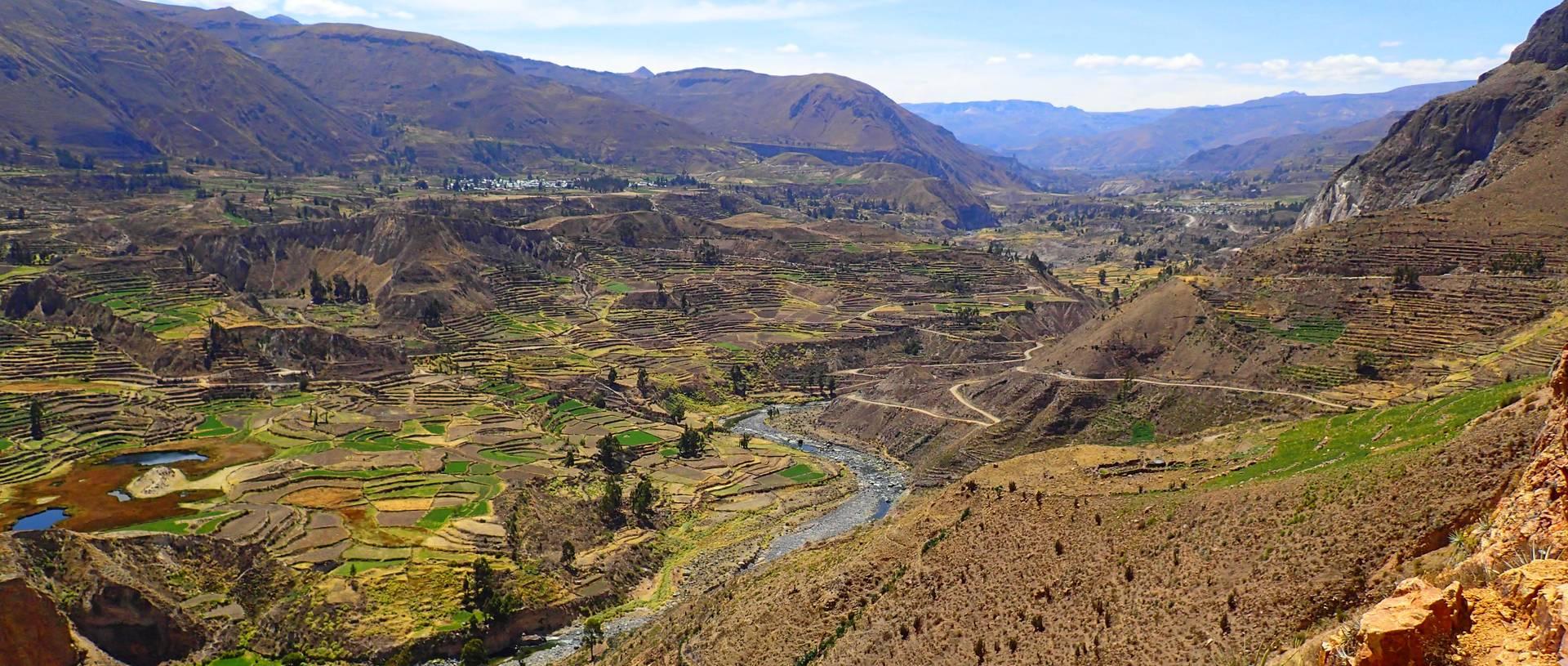 Terraced Fields Throughout Peru