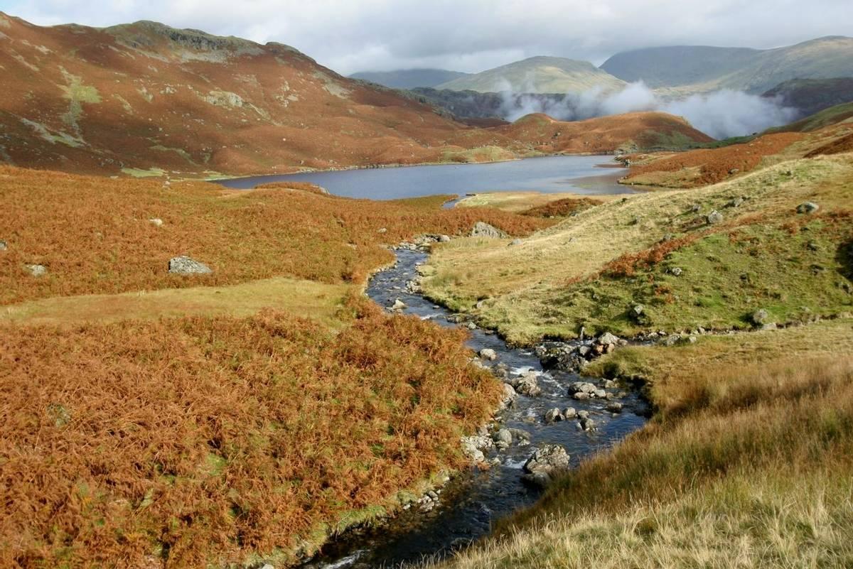 Easedale_Tarn_Autumn_Lake_District_AdobeStock_18015468.jpeg