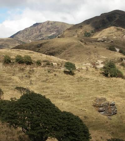 Singalila Ridge