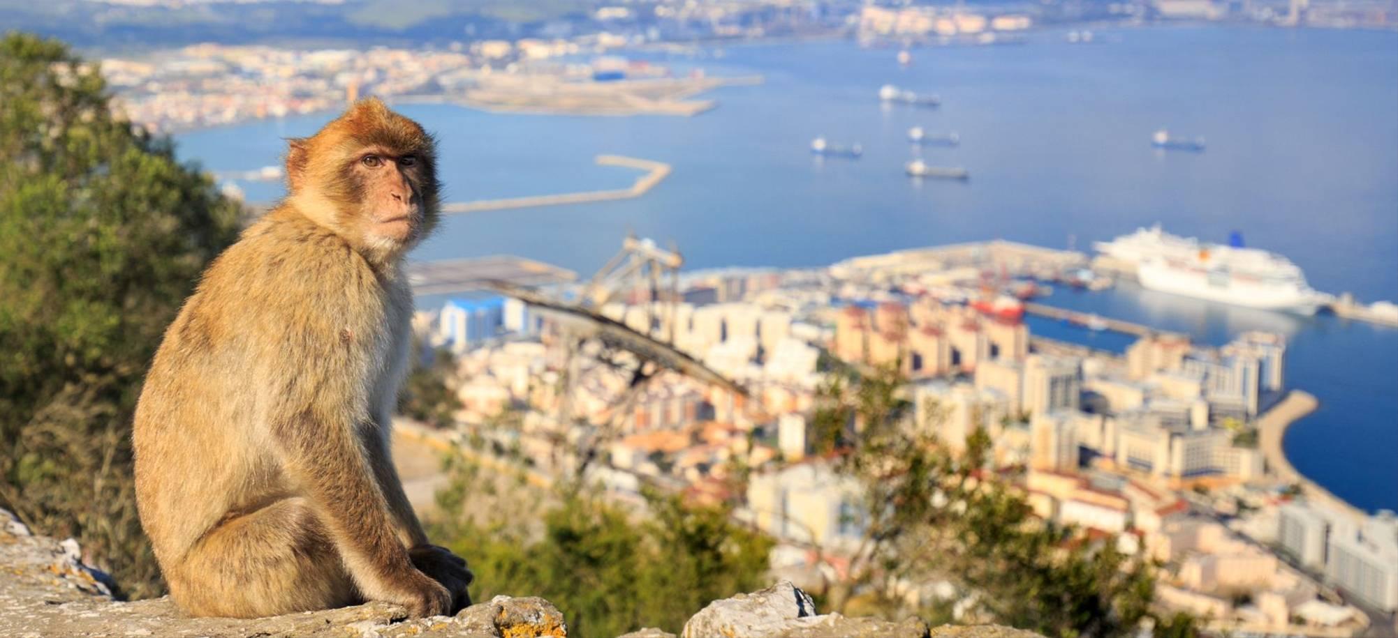 Gibraltar2 - Itinerary Desktop.jpg