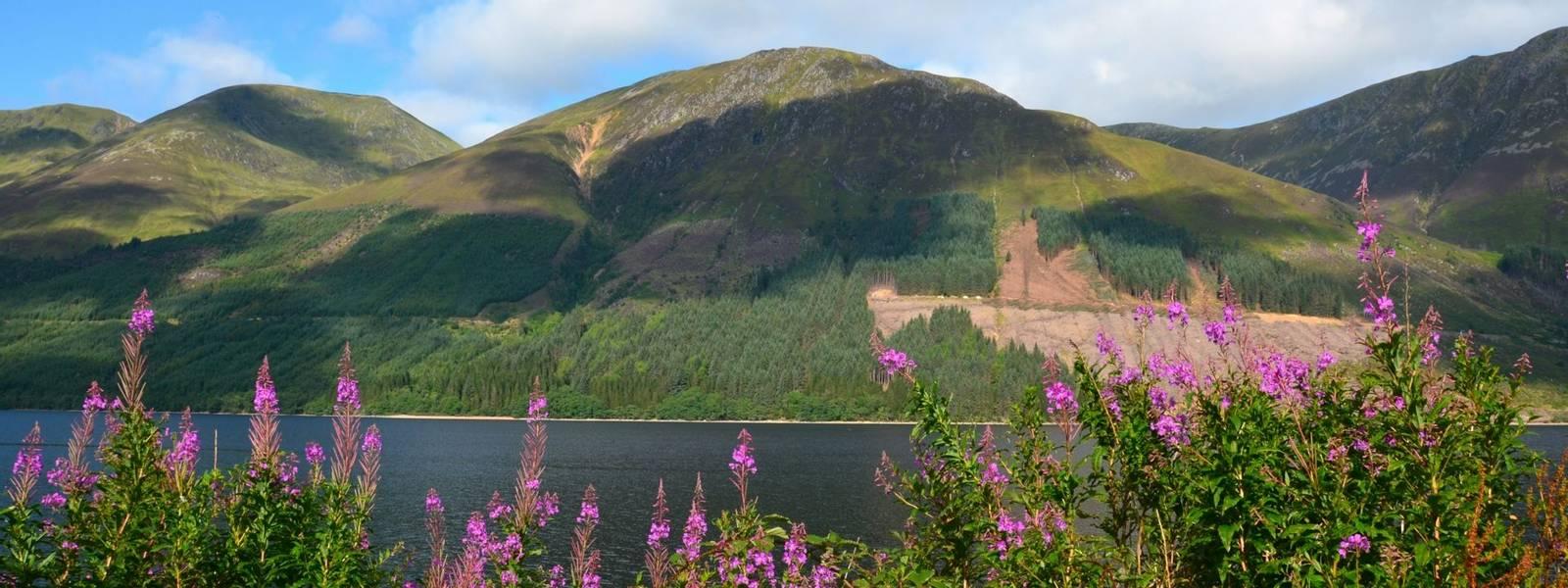 Scottish Highlands - Walking With Sightseeing - AdobeStock_51201819.jpeg