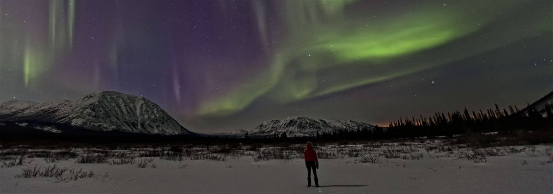 Northern Lights Yukon Credit  Robert Postma & Yukon Government 2.jpg