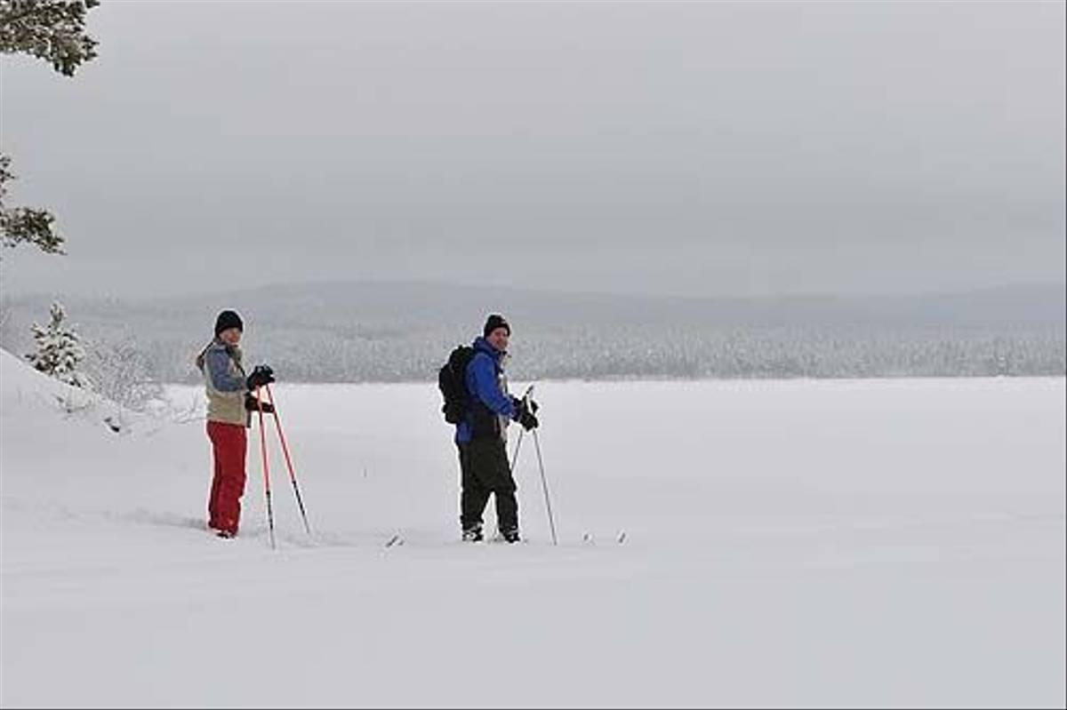 Cross Country Skiing (Anders Stahl)