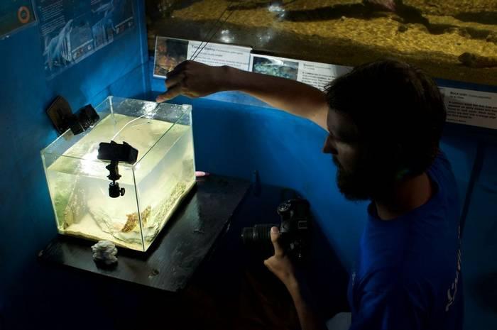 Jack with photography aquarium setup