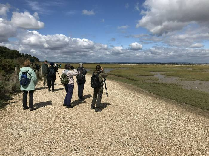 Birding group on edge of Pagham Harbour