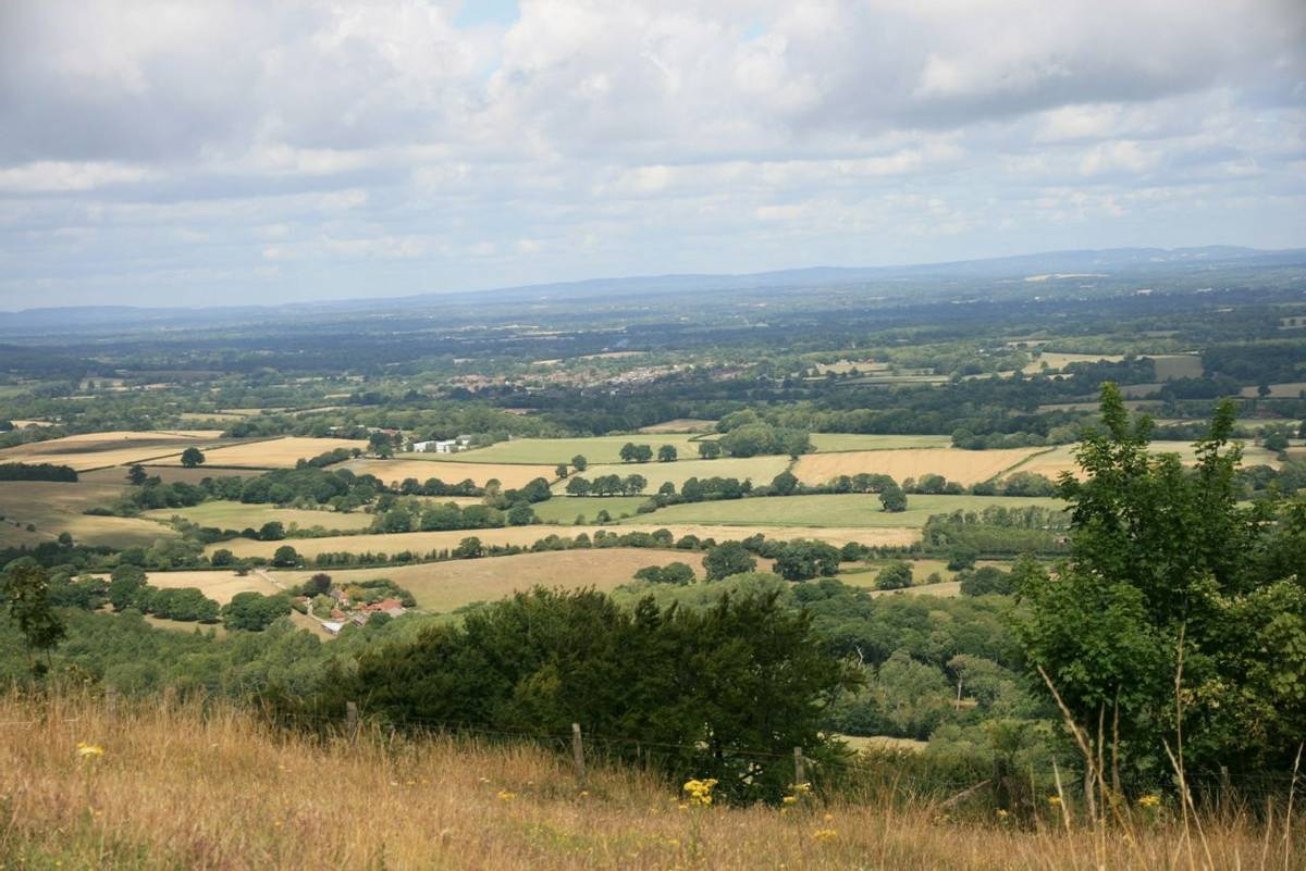 View NW from Chanctonbury Ring.JPG