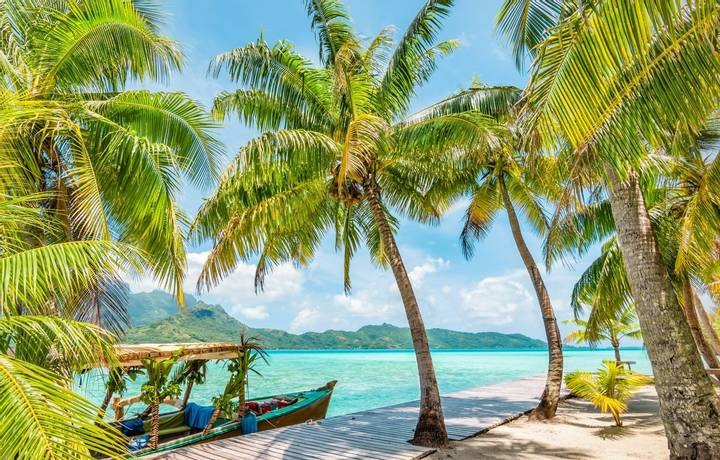 Beautiful summer landscape with coconut palm trees on tropical Island of Bora Bora, French Polynesia. Decorated tourist boat…