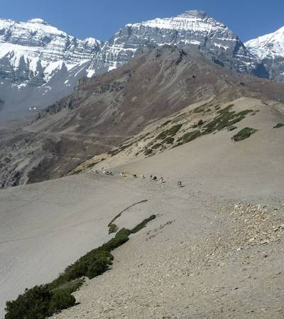 Crossing Chharka La (5,015m)