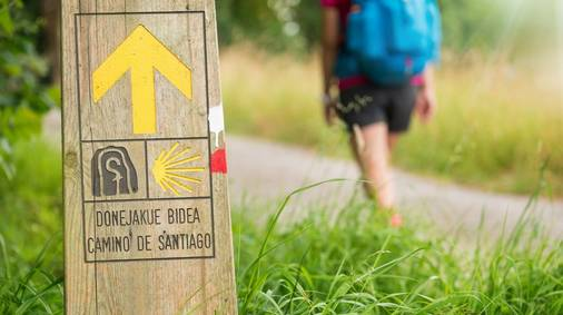 Camino de Santiago Guided Trail