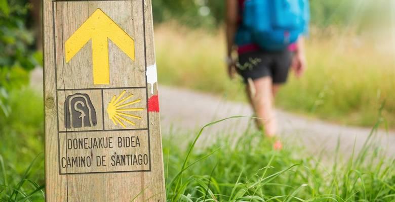 Camikno de Santiago guided walking holiday, Spain
