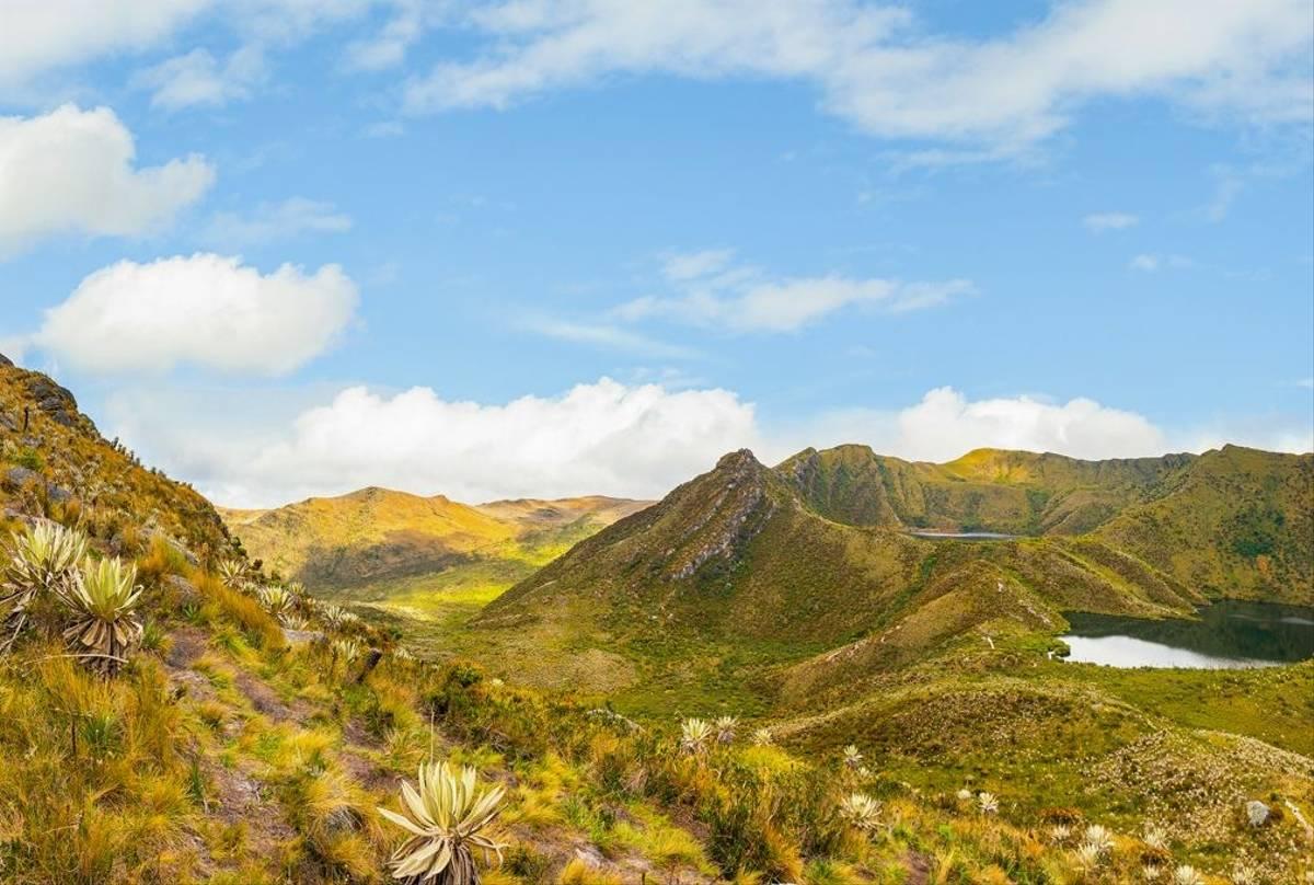 Chingaza Paramo, Colombia Main Image Shutterstock 1295087986