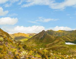 Colombia - The Magdalena Valley and Eastern Andes
