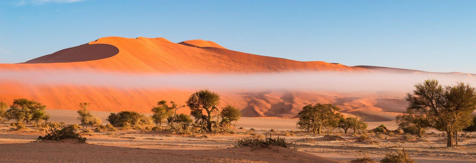 Sand dunes in the Namib desert, roadtrip in the wonderful Namib Naukluft National Park, travel destination in Namibia, Afric…