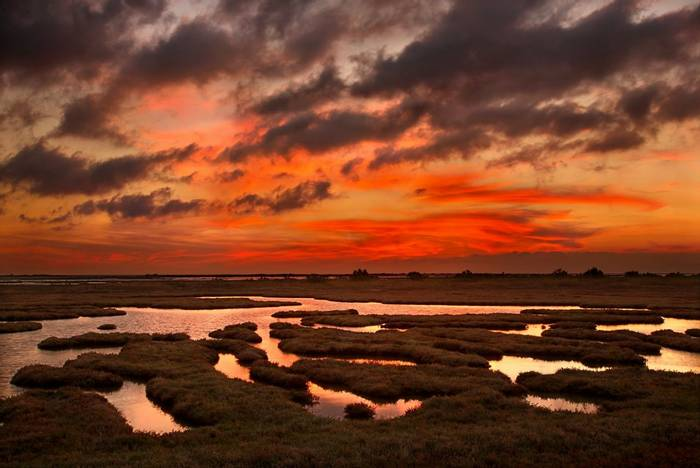 Evros Delta at sunset, Greece shutterstock_727744831.jpg
