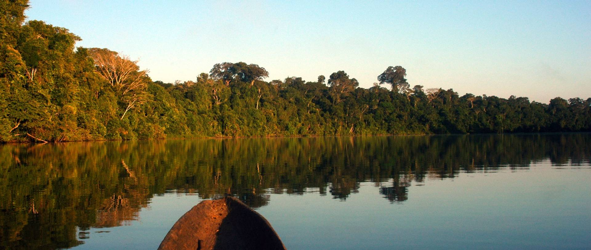 Travelling through the Amazon Jungle by boat