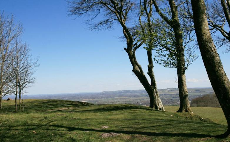 View from Chanctonbury Ring.JPG