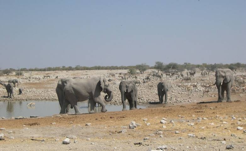 Namibia 2008 093.jpg