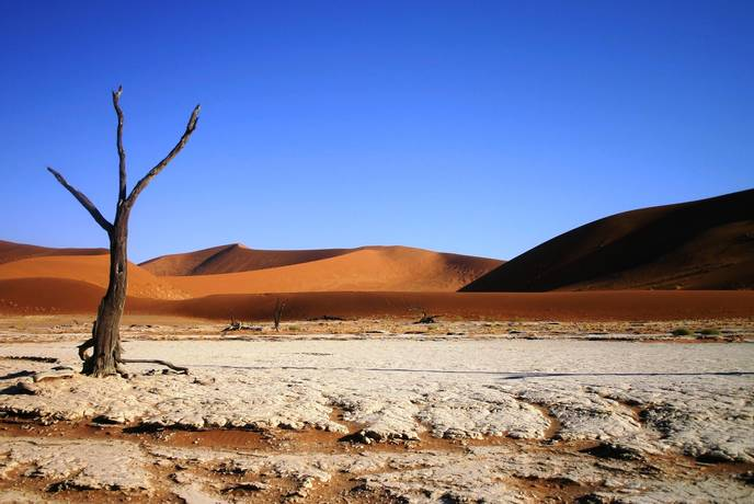 Photo Competition - Sossusvlei sand dunes Namibia