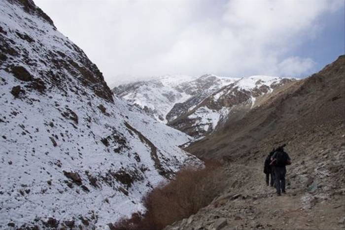 On the trail of the Snow Leopard (Russell Scott)