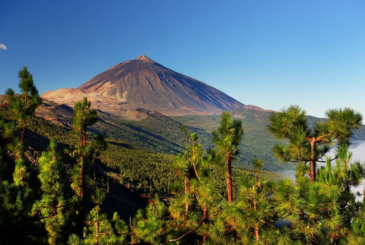 El Teide National Park, Canary Islands, Spain Shutterstock 237003448