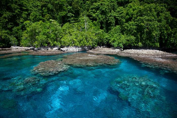 Island in eastern Coral Triangle, Solomon Islands