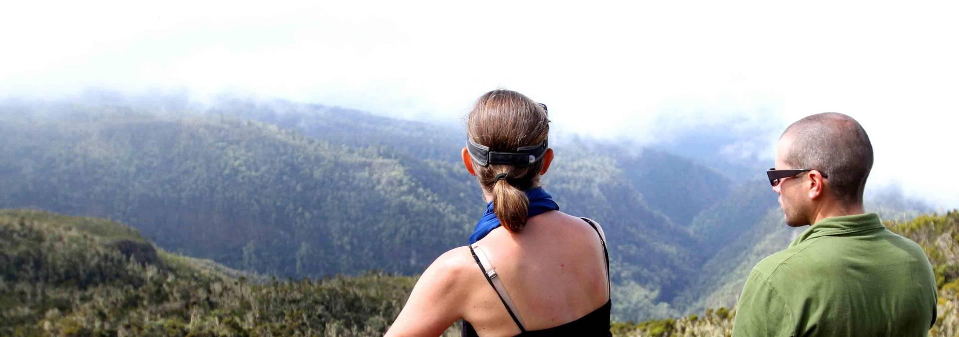 Climbing Kilimanjaro With Honey Badger (3)