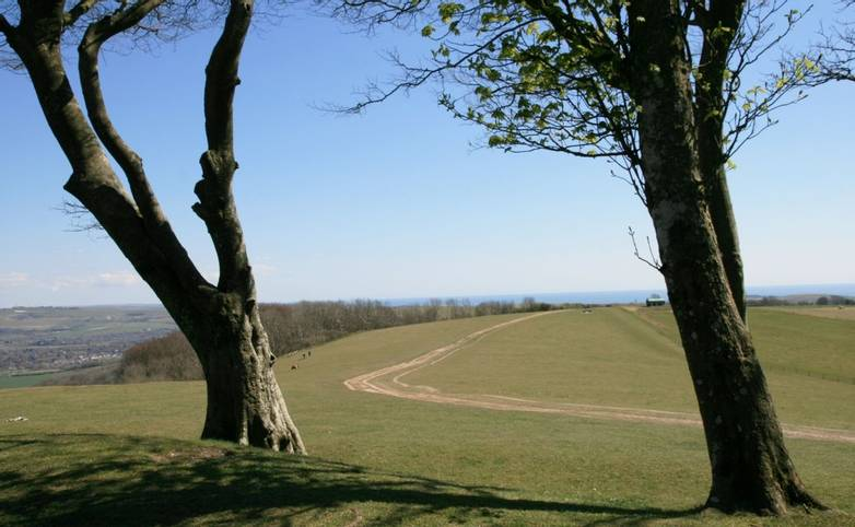 View of South Downs Way from Chanctonbury Ring.JPG