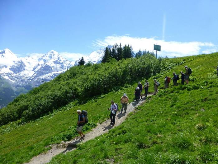 Group walking from Murren (Kerrie Porteous)