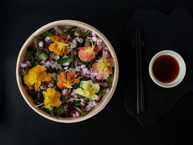 Vegan Dumplings + Shou Sugi Ban House + Culinary + 2019