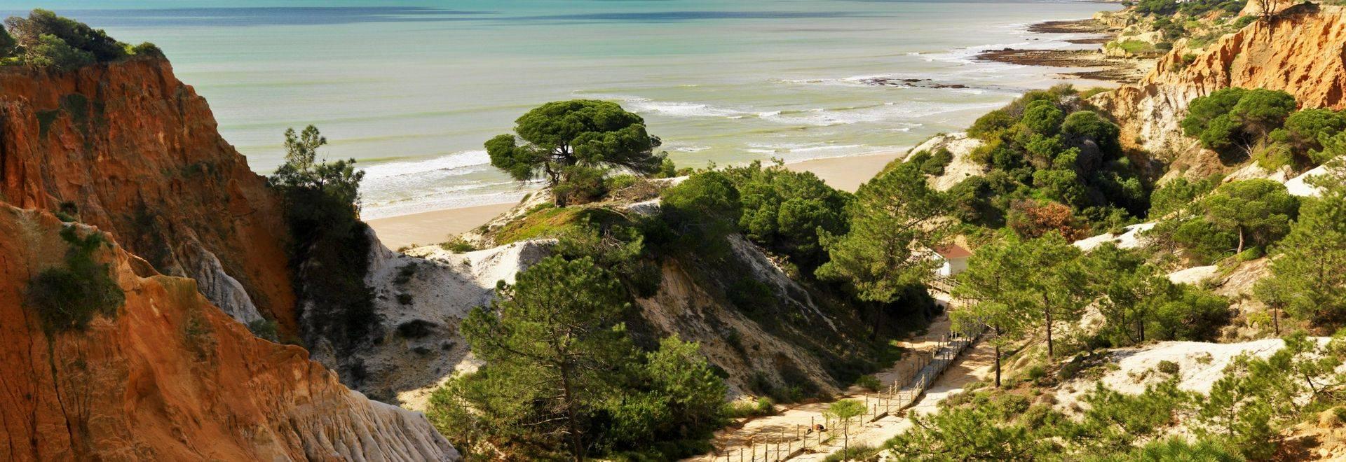 Pine-Cliffs-Praia-da-Falesia-beach.jpg