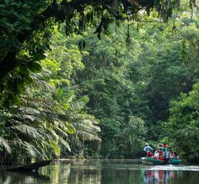Boat tour around Tortuguero waterways
