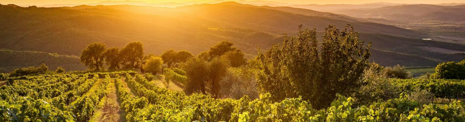 Tuscany Region Image.jpg
