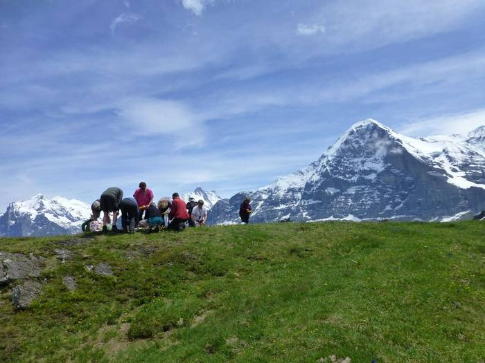 Lunch under the Eiger (Kerrie Porteous)